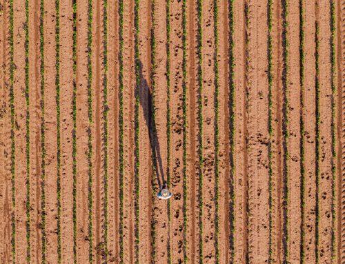 Изменения в работе аграриев